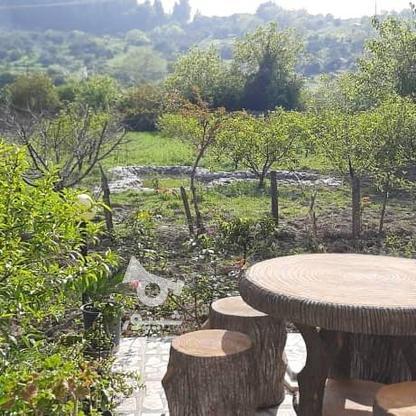 رهن واجاره ویلا 210 متر بلوار کشاورز جنب باغ کرمانی در گروه خرید و فروش املاک در مازندران در شیپور-عکس6