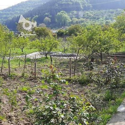 رهن واجاره ویلا 210 متر بلوار کشاورز جنب باغ کرمانی در گروه خرید و فروش املاک در مازندران در شیپور-عکس9