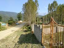 فروش زمین در ییلاق انارم پلسفید در شیپور