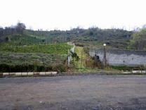 مزایده زمینی استثنایی در شیپور