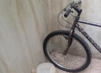 دوچرخه مثلث بدنه اساک دماوند در شیپور-عکس کوچک