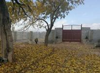 باغ 500متری در شیپور-عکس کوچک