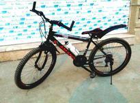 دوچرخه حرفه ای در شیپور-عکس کوچک