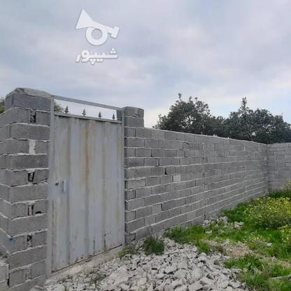 فروش زمین 147 متر پشت ترمینال (اخلاص) در گروه خرید و فروش املاک در مازندران در شیپور-عکس5