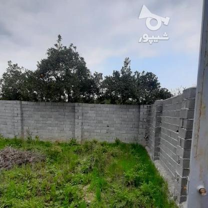 فروش زمین 147 متر پشت ترمینال (اخلاص) در گروه خرید و فروش املاک در مازندران در شیپور-عکس2