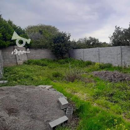 فروش زمین 147 متر پشت ترمینال (اخلاص) در گروه خرید و فروش املاک در مازندران در شیپور-عکس3