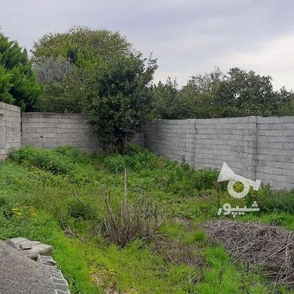 فروش زمین 147 متر پشت ترمینال (اخلاص) در گروه خرید و فروش املاک در مازندران در شیپور-عکس4