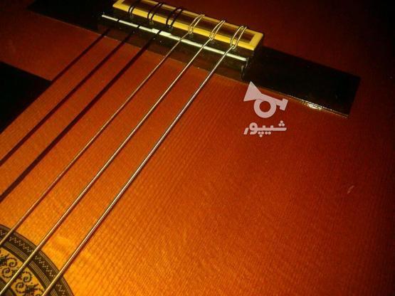 گیتار یاماها c200ژاپن در گروه خرید و فروش ورزش فرهنگ فراغت در کرمان در شیپور-عکس5
