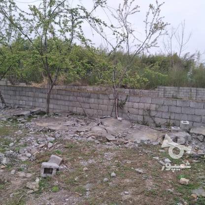 فروش زمین مسکونی 350 متر در رضوانشهر در گروه خرید و فروش املاک در گیلان در شیپور-عکس2