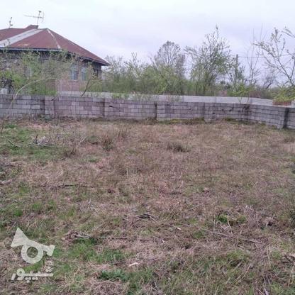 فروش زمین مسکونی 350 متر در رضوانشهر در گروه خرید و فروش املاک در گیلان در شیپور-عکس3