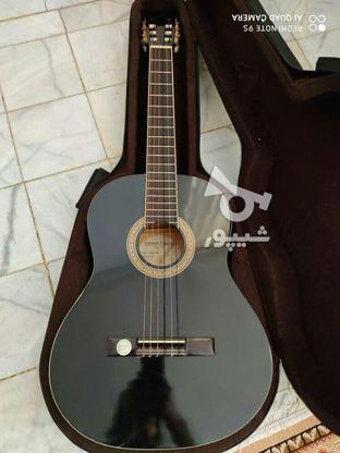 گیتار هافنرhac204 در گروه خرید و فروش ورزش فرهنگ فراغت در کرمان در شیپور-عکس2