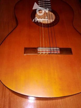 گیتار پرینس اندونزی در گروه خرید و فروش ورزش فرهنگ فراغت در کرمان در شیپور-عکس2