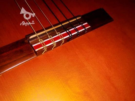 گیتار پرینس اندونزی در گروه خرید و فروش ورزش فرهنگ فراغت در کرمان در شیپور-عکس6