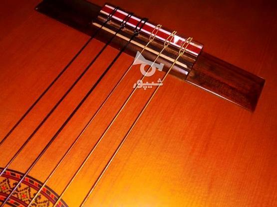 گیتار پرینس اندونزی در گروه خرید و فروش ورزش فرهنگ فراغت در کرمان در شیپور-عکس7