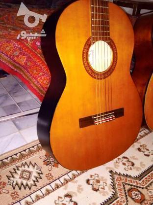 گیتار پرینس اندونزی در گروه خرید و فروش ورزش فرهنگ فراغت در کرمان در شیپور-عکس8