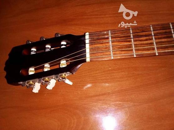 گیتار پرینس اندونزی در گروه خرید و فروش ورزش فرهنگ فراغت در کرمان در شیپور-عکس3