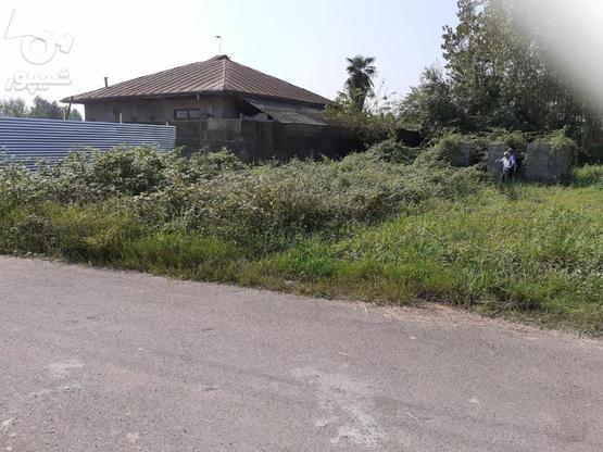 فروش مسکونی روستایی در گروه خرید و فروش املاک در گیلان در شیپور-عکس3