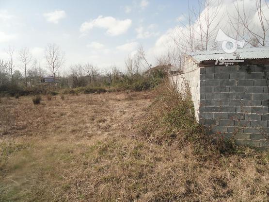 333 متر زمین نُقلی در گلرودبار لاهیجان در گروه خرید و فروش املاک در گیلان در شیپور-عکس2