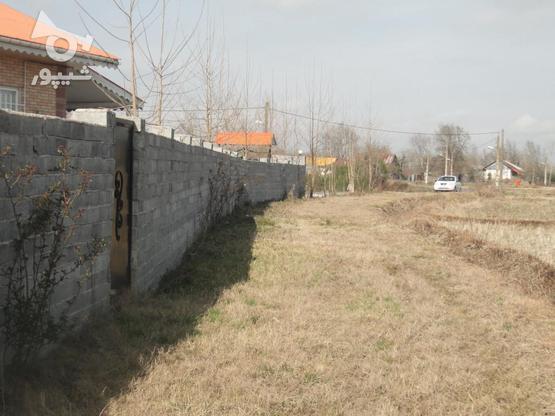333 متر زمین نُقلی در گلرودبار لاهیجان در گروه خرید و فروش املاک در گیلان در شیپور-عکس6