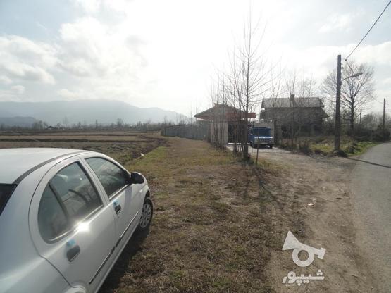 333 متر زمین نُقلی در گلرودبار لاهیجان در گروه خرید و فروش املاک در گیلان در شیپور-عکس3