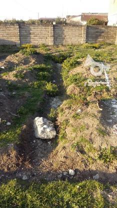150متر زمین بافت فروش فوری در گروه خرید و فروش املاک در مازندران در شیپور-عکس2