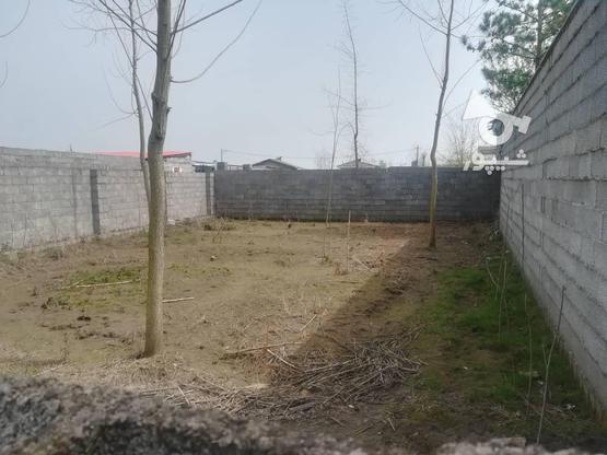 200زمین نسق مسکونی در لله کا در گروه خرید و فروش املاک در گیلان در شیپور-عکس2