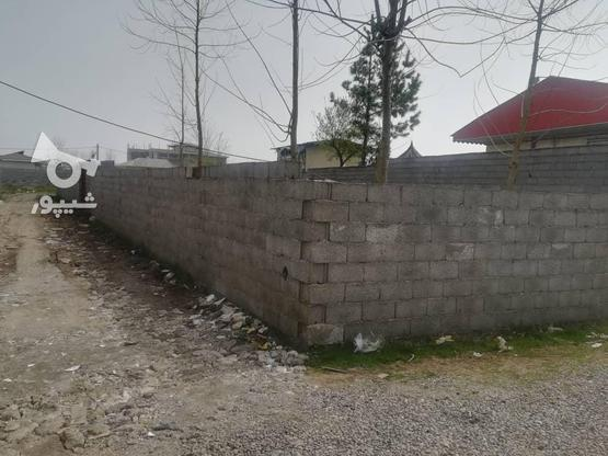 200زمین نسق مسکونی در لله کا در گروه خرید و فروش املاک در گیلان در شیپور-عکس3