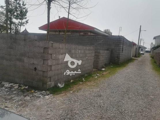 200زمین نسق مسکونی در لله کا در گروه خرید و فروش املاک در گیلان در شیپور-عکس1