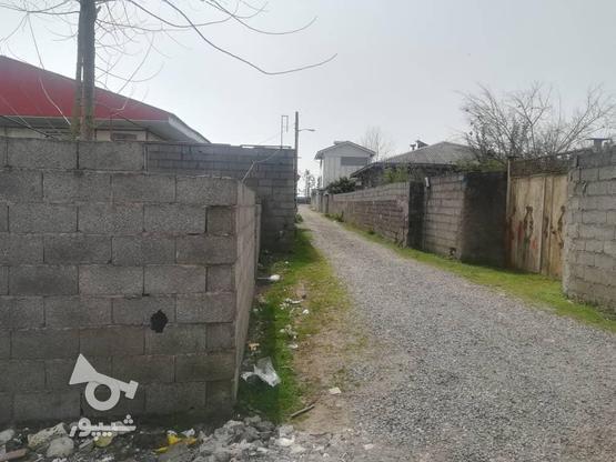 200زمین نسق مسکونی در لله کا در گروه خرید و فروش املاک در گیلان در شیپور-عکس5