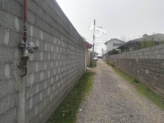 200زمین نسق مسکونی در لله کا در گروه خرید و فروش املاک در گیلان در شیپور-عکس4