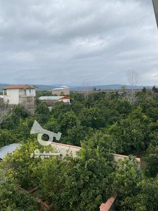 فروش ویلا استخردار تریبلکس500 متر ویو جنگل و باغ در گروه خرید و فروش املاک در مازندران در شیپور-عکس2
