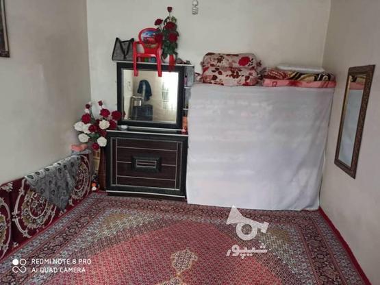 فروش ویلا 110 متر در تالش در گروه خرید و فروش املاک در گیلان در شیپور-عکس3