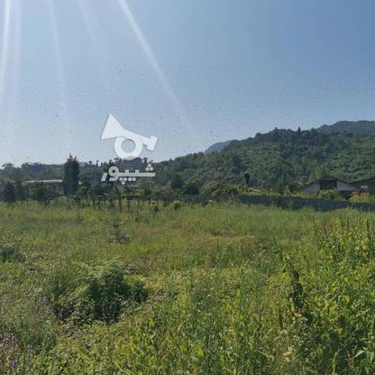 فروش زمین مسکونی 200 متر در تنکابن شعیب کلایہ در گروه خرید و فروش املاک در مازندران در شیپور-عکس1
