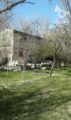 فروش ویلا باغ/4500متر سند دار /گل زرد  در گروه خرید و فروش املاک در همدان در شیپور-عکس1