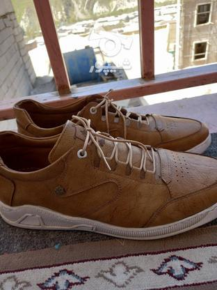کفش مردانه چرم در گروه خرید و فروش لوازم شخصی در تهران در شیپور-عکس1