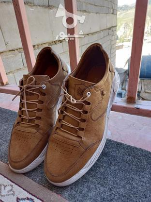 کفش مردانه چرم در گروه خرید و فروش لوازم شخصی در تهران در شیپور-عکس2
