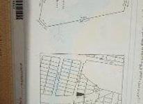 قطعه زمین مسکونی در بیست متری زعفرانیه شبستر در شیپور-عکس کوچک