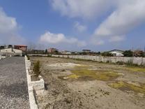 فروش زمین مسکونی 380 متر در سرخرود در شیپور