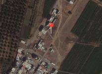 فروش زمین مسکونی 157 متر در نظرآباد صالح آباد لاله  در شیپور-عکس کوچک