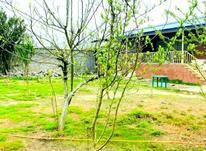 فروش ویلا 450 متر در نور در شیپور-عکس کوچک
