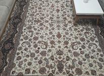 6تا فرش 700شانه طرح افشان در شیپور-عکس کوچک