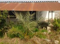 فروش زمین 400 متر در آمل در شیپور-عکس کوچک