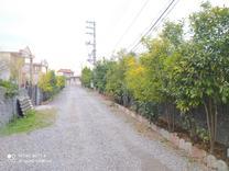 فروش یا معاوضه زمین مسکونی 300 متر در چمستان سنددار در شیپور