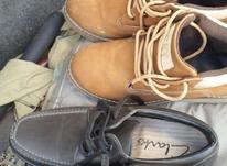دوجفت کفش سایز 41ویکیش 40 در شیپور-عکس کوچک