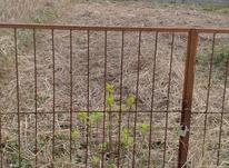 فروش زمین 200 متر عالی و زیر قیمت در چالوس در شیپور-عکس کوچک