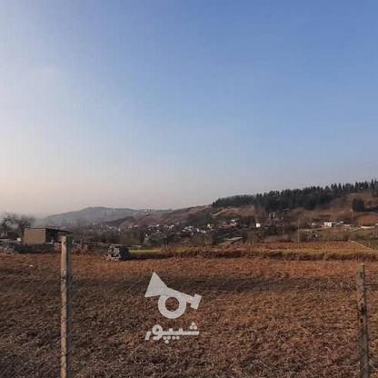 1000متر زمین در سانخیل در گروه خرید و فروش املاک در مازندران در شیپور-عکس2