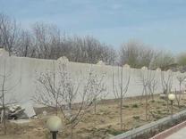 باغچه کامرانیه در شیپور