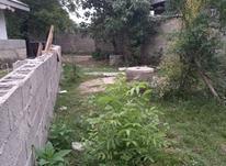 870 متر زمین مسکونی در شفت در شیپور-عکس کوچک
