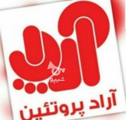 استخدام ویزیتور در شرکت آراد پروتئین در گروه خرید و فروش استخدام در تهران در شیپور-عکس1