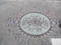 دوعددقالی 12متری در شیپور-عکس کوچک